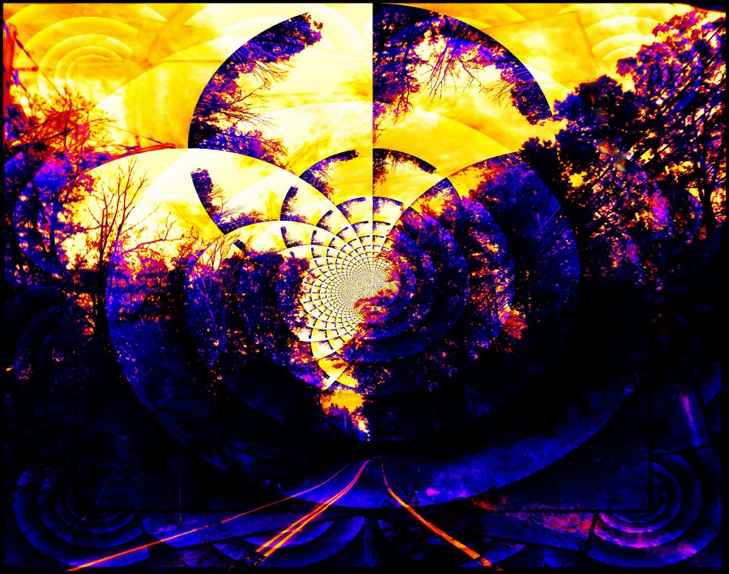 A Hypnotic Ride Into the Sunset by olivetreeann