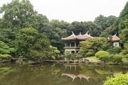 11th Oct 2018 - Japanese garden
