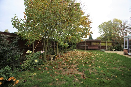 My Garden October 2018 by phil_sandford