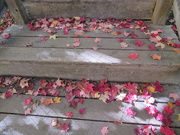 17th Oct 2018 - Autumn leaves and reflection on stairs