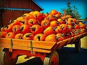 22nd Oct 2018 - Pumpkin Everything