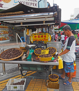 19th Oct 2018 - Chinese Chestnuts