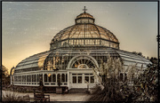 20th Oct 2018 - Vintage palm house