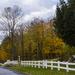 Glen Nevis Side Road