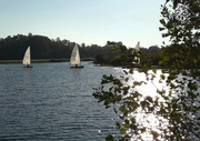 21st Oct 2018 - The sailing lake