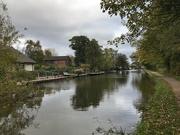 24th Oct 2018 - Circular walk from Barton Grange Garden Centre via the Lancaster Canal