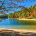 Walk around Walden Pond by jernst1779