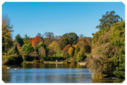 25th Oct 2018 - By The Lake In Autumn