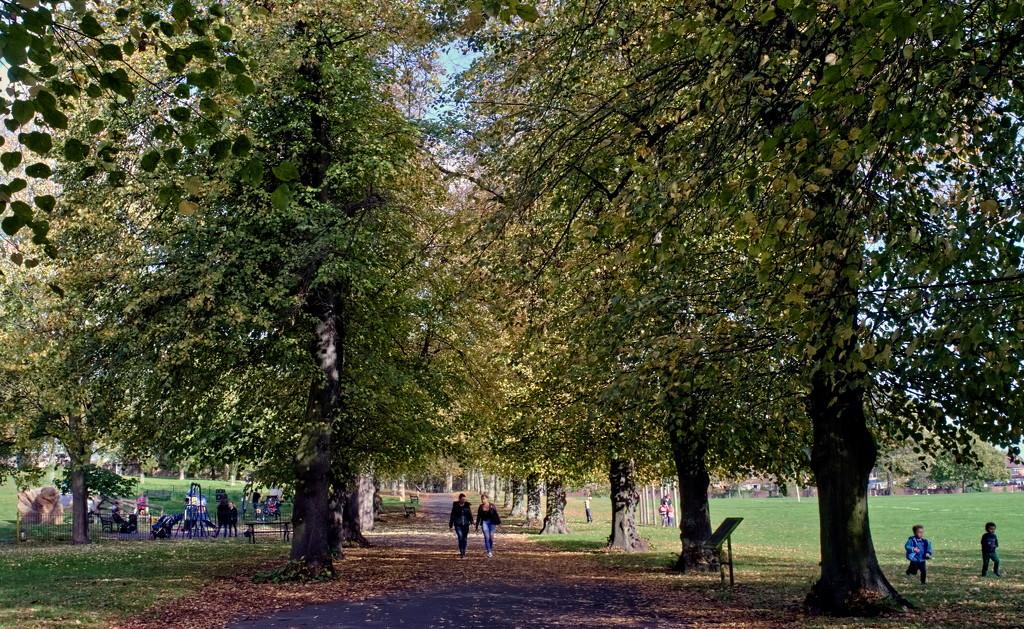 Parklife : Vernon Park Basford by phil_howcroft