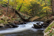 26th Oct 2018 - Roaring Brook