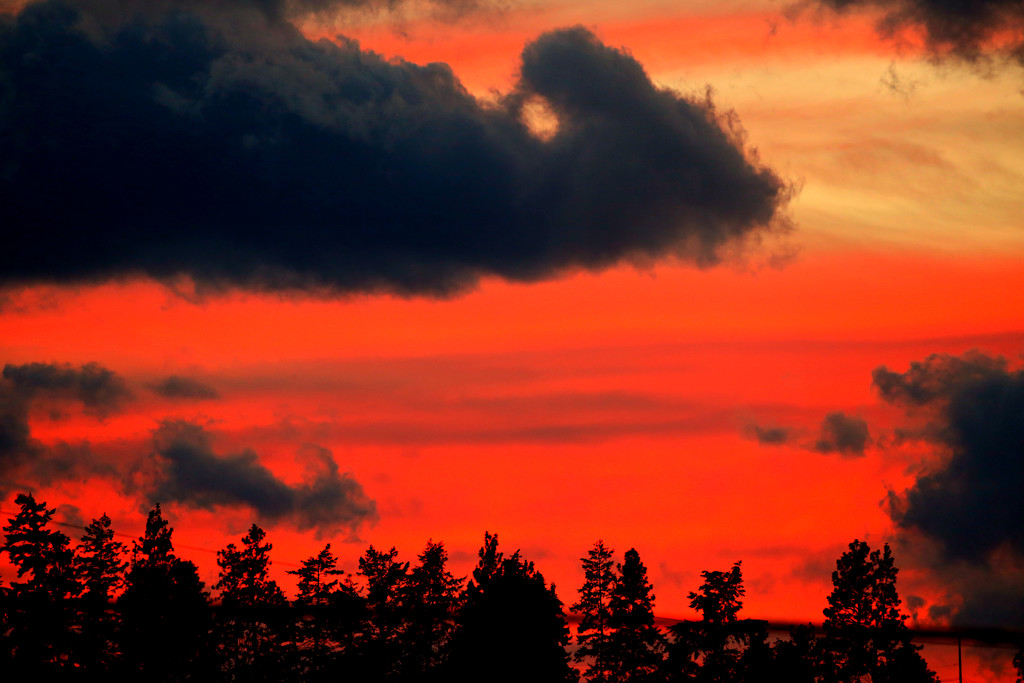 Colourful Sky in the Evening by gq