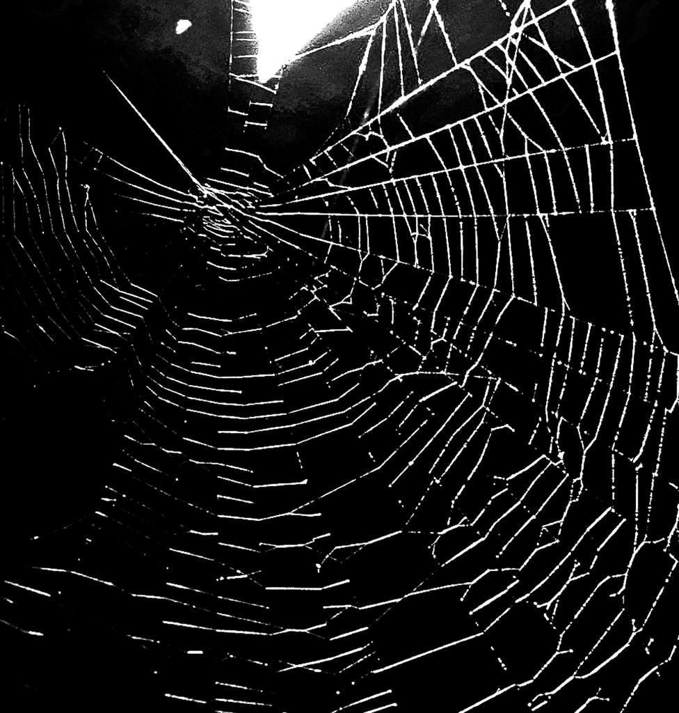 The dark web by rexcomu