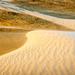 Sand Dunes by yaorenliu