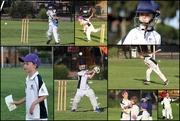 26th Oct 2018 - Oscar & Harry at cricket