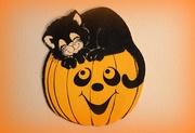 29th Oct 2018 - Halloween kitty on a pumpkin