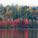 Fall's Splendor at Green Lake 2018 by seattlite