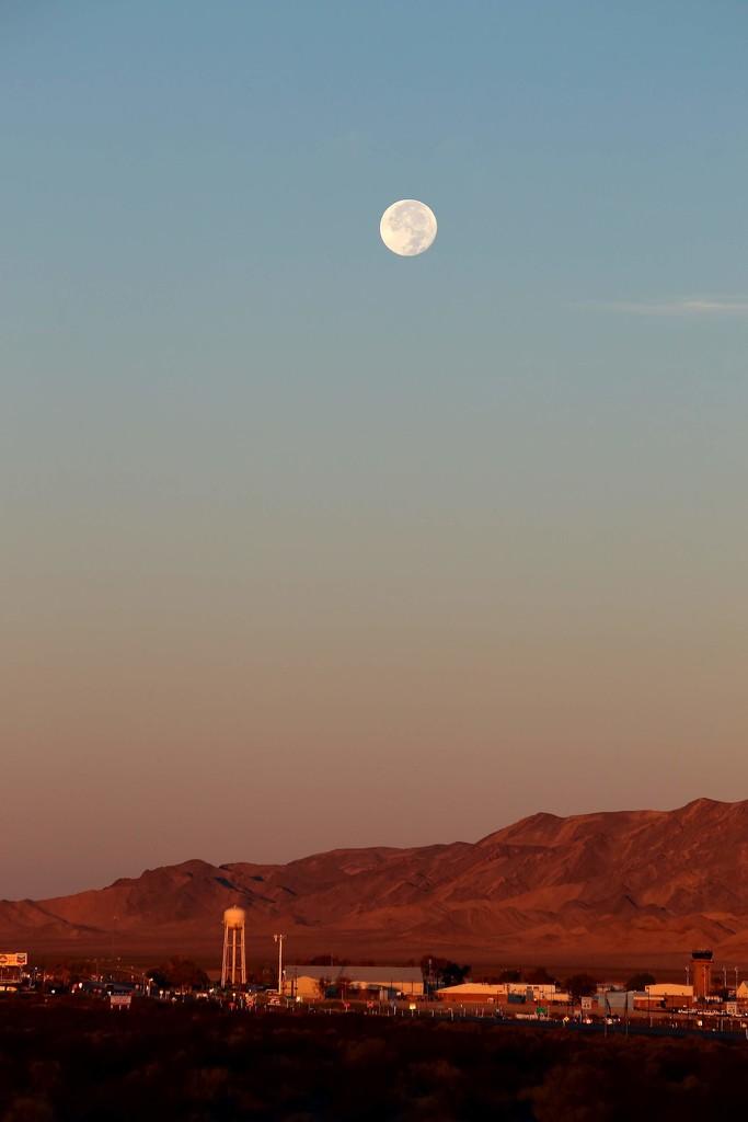 Desert moon by blueberry1222