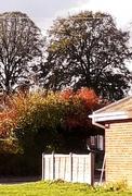 29th Oct 2018 - Autumn in the village