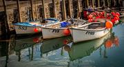 29th Oct 2018 - Three boats