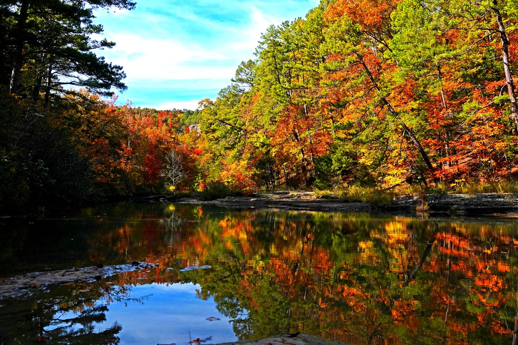 Fall Color Has Arrived by milaniet