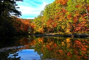 29th Oct 2018 - Fall Color Has Arrived