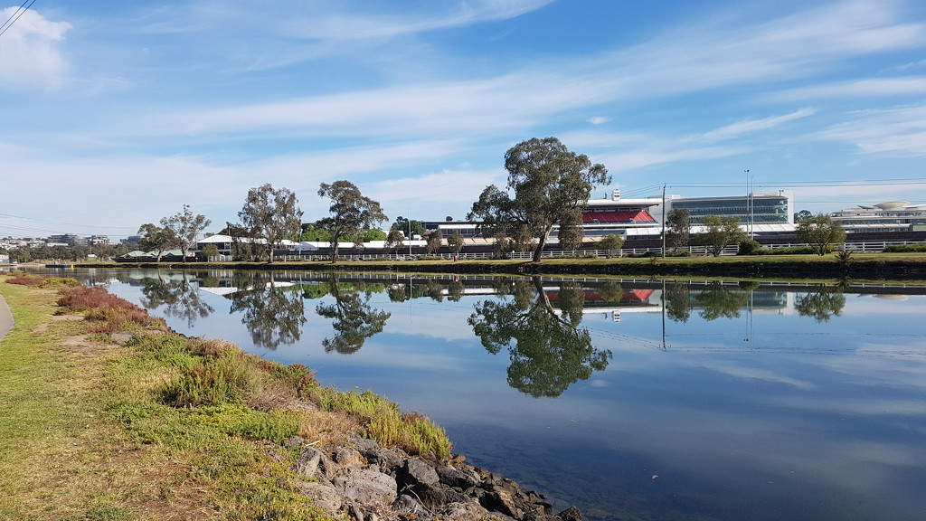 Peaceful morning by the Maribyrnong River  by princessm