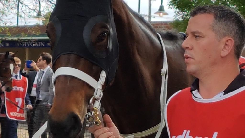 Australia's Darling. Pre-race. by princessm