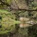 Bretti Creek