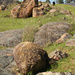 Rocks at Tingha, NSW