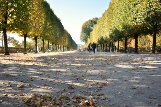 Impressions of Paris by alophoto