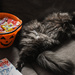 Too...! Much....!! Candy.....!!!!!  by vera365