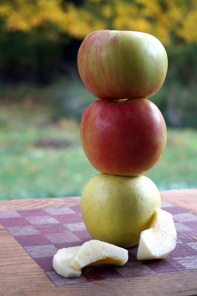 Apples by tunia