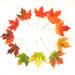 Fall 7 by loweygrace