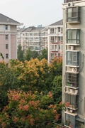 21st Oct 2018 - Apartments