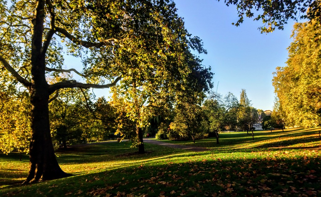 St James's Park autumn morning by boxplayer