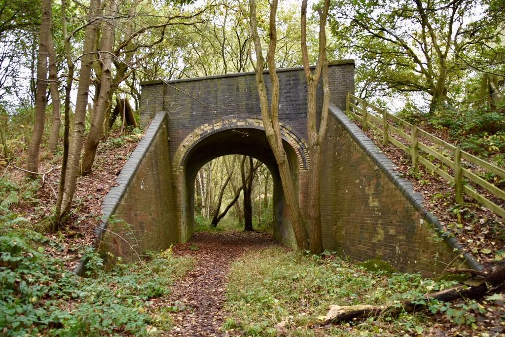Old Railway Bridge by gillian1912