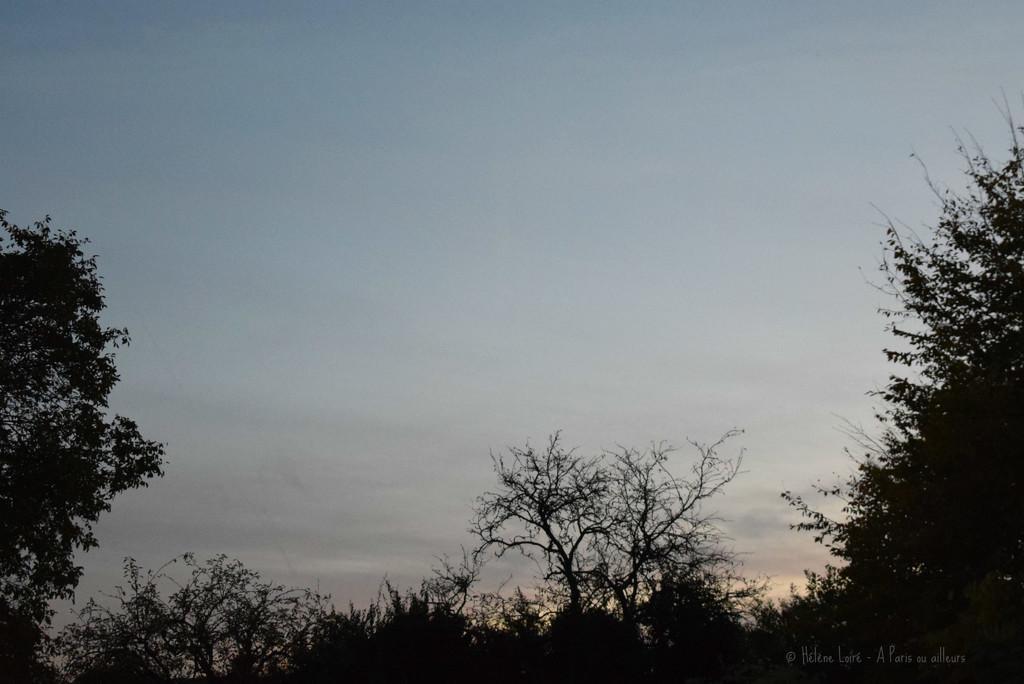 morning by parisouailleurs