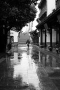 31st Oct 2018 - Rain