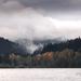 ~Lake Padden~
