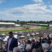 Derby Day at Flemington