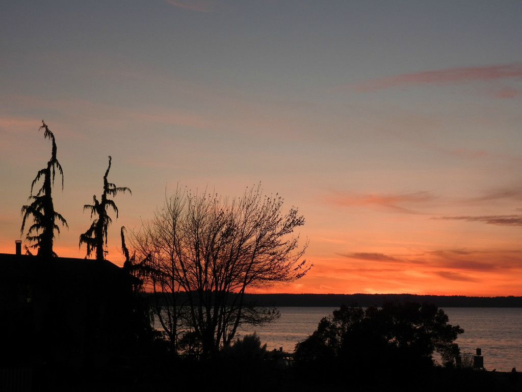 Sunset At Lowman Park by seattlite