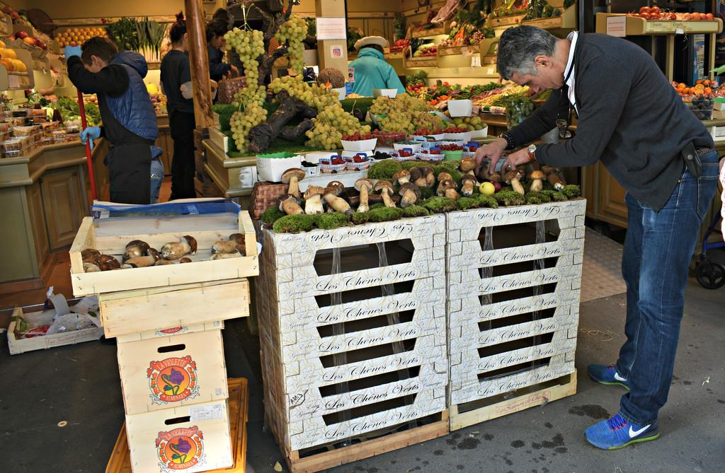Worker Arranging Mushrooms in a Paris Fresh Market by alophoto