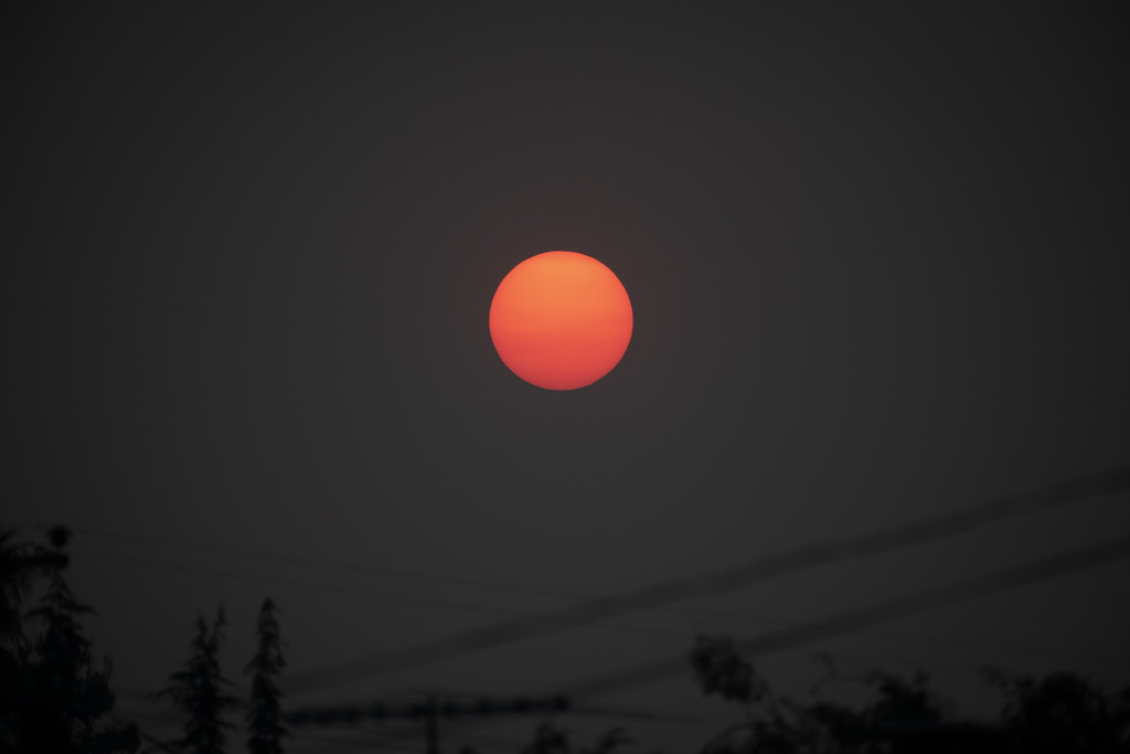 Sun viewed through the smoke by mikegifford