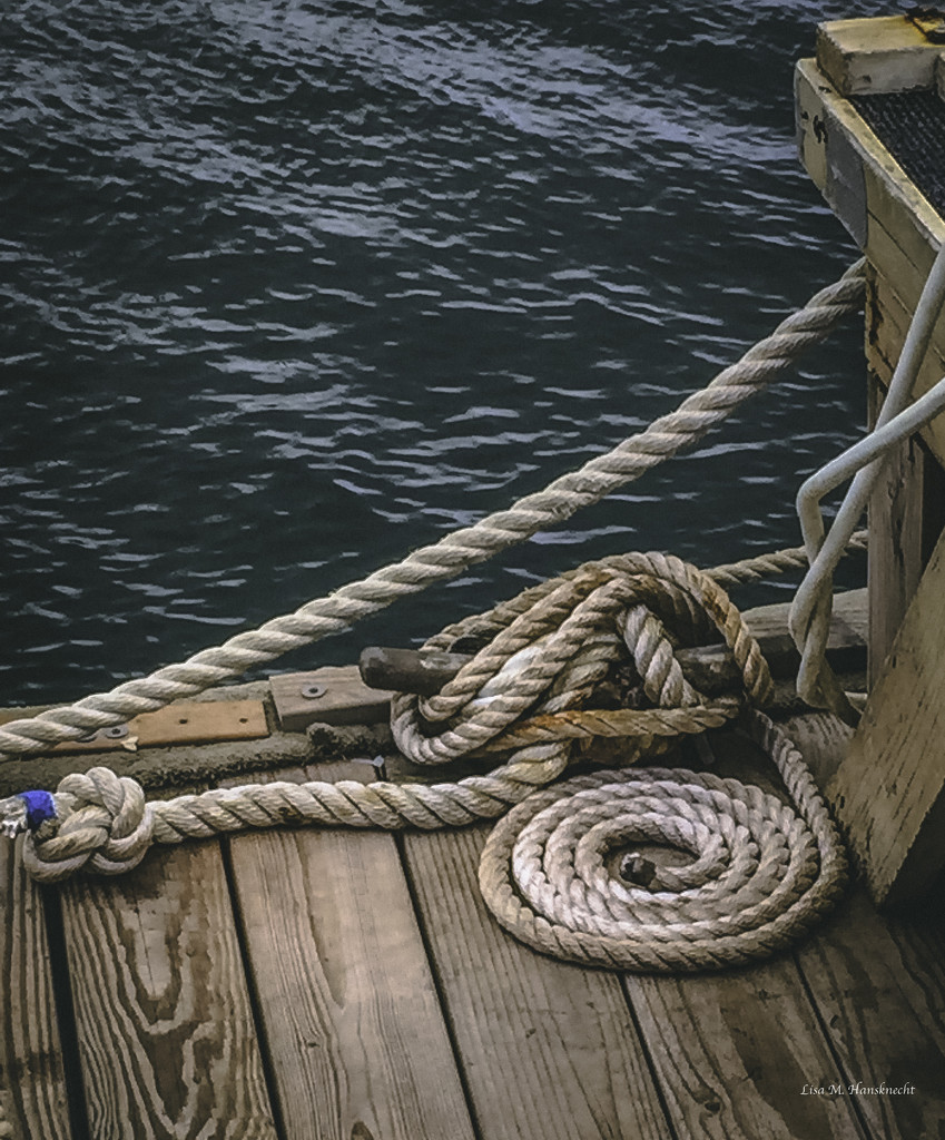 2015-11-22 Maui dock ropes by lisahans