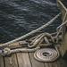2015-11-22 Maui dock ropes