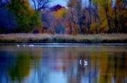 9th Nov 2018 - Autumn Calm