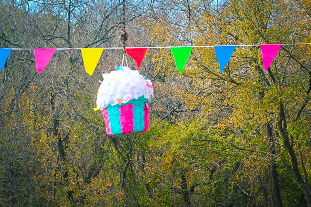 Cupcake Piñata by judyc57