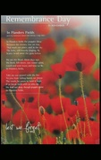 11th Nov 2018 - REMEMBRANCE DAY