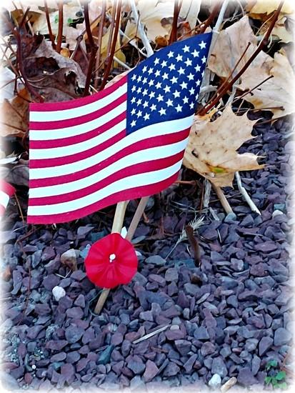 Veterans Day  by jo38
