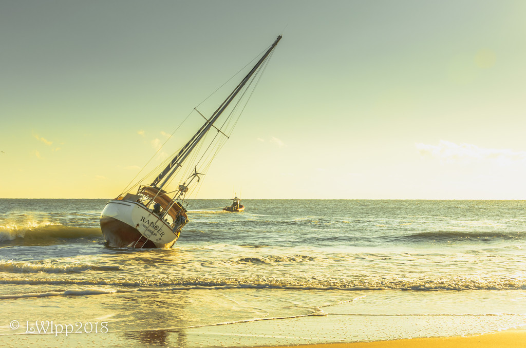 Grounded  by lesip